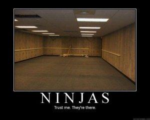 Ninjas_1