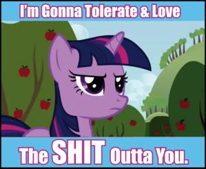 mlp_tolerate