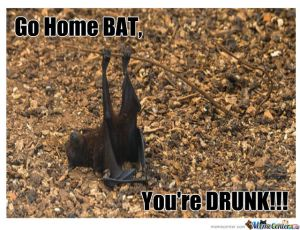 go-home-bat_o_835072
